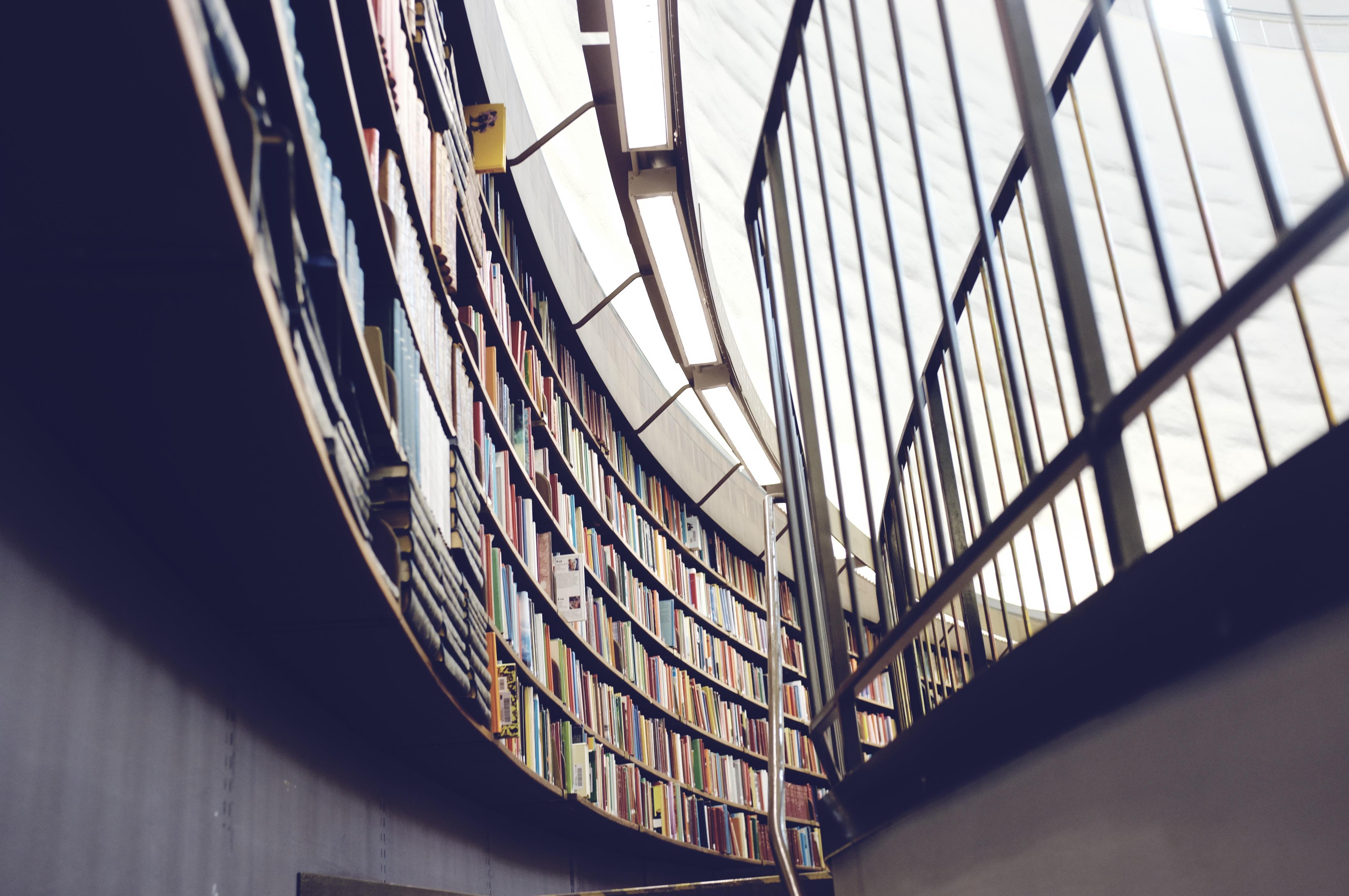 Eine ganze Bibliothek findet Platz im E-Book-Reader CC0 1.0