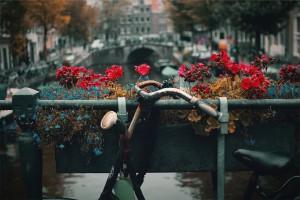 Amsterdam CC0